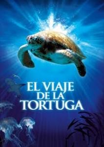 Documental online: El viaje de la tortuga